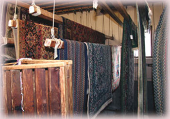 Rug Cleaning Palm Coast